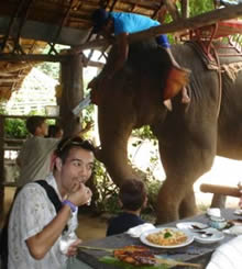 Riverside lunch with elephants ...